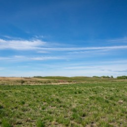 blue sky over green grass hills and fields in cobblestone creek, airdrie