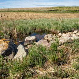 field with rocks lining the creek in cobblestone creek, airdrie